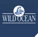 Wild_Ocean.png